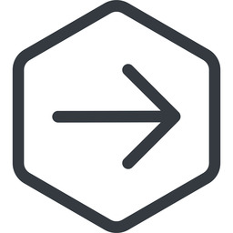 arrow-simple line, right, hexagon, arrow, direction, arrow-simple free icon 256x256 256x256px