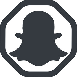 snapshat-solid line, wide, solid, octagon, logo, brand, social, network, chat, snapshat-solid, snapchat free icon 256x256 256x256px