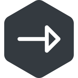 arrow right, normal, solid, hexagon, arrow free icon 256x256 256x256px