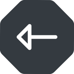 arrow left, normal, solid, octagon, arrow free icon 256x256 256x256px