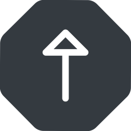 arrow up, normal, solid, octagon, arrow free icon 256x256 256x256px