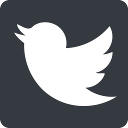 twitter up, normal, solid, square, logo, brand, horizontal, mirror, social, twitter, bird, twit free icon 256x256 256x256px