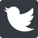 twitter up, normal, solid, square, logo, brand, horizontal, mirror, social, twitter, bird, twit free icon 128x128 128x128px