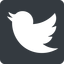 twitter up, normal, solid, square, logo, brand, horizontal, mirror, social, twitter, bird, twit free icon 64x64 64x64px