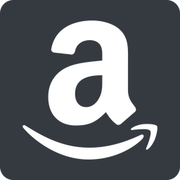 amazon normal, solid, square, logo, brand, shop, buy, ecommerce, market, place, amazon free icon 256x256 256x256px
