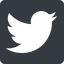 twitter icon. up, normal, solid, square, logo, brand, social, twitter, bird, twit icon. Friconix, free collection of beautiful icons.
